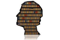 curriculum tekstschrijver De Taaltaxi